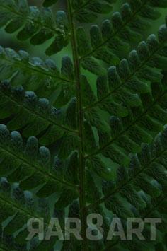 07 - grün, brauntöne