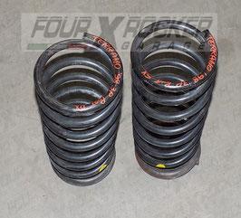 Coppia molle posteriori Nissan Terrano 2 3 porte 2.7td 97-99