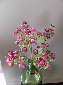 Branche de fleurettes roses