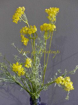 Bouquet champêtre jaune