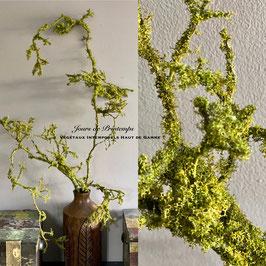 Branche de Mousse 100 cm