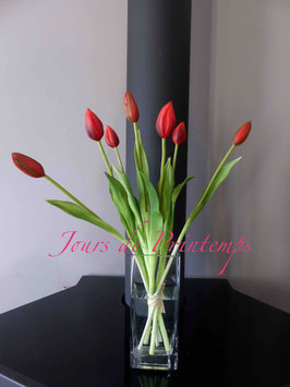 Botte de 7 Tulipes en bouton Rouge