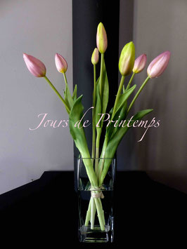 Botte de 7 tulipes en bouton rose pâle