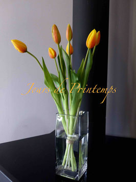 Botte de 7 tulipes en bouton orange