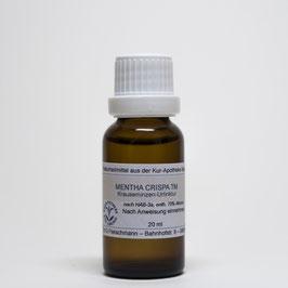 Mentha crispa TM – Krauseminzen-Urtinktur