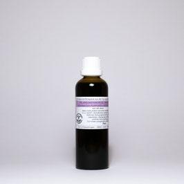 Pelargonienwurzel-Urtinktur (zusammengesetzt)