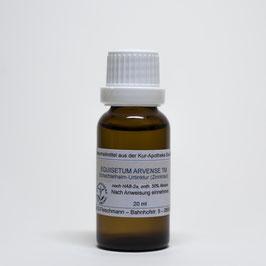 Equisetum arvense TM – Schachtelhalm-Urtinktur