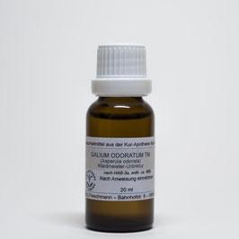 Galium odoratum TM – Waldmeister-Urtinktur