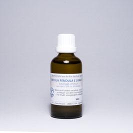 Betula alba TM e linfa – Birkensaft-Urtinktur