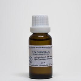 Olea europaea TM – Ölbaumblätter-Urtinktur