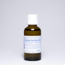 Conium maculatum  D4