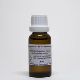 Harpagophytum TM=D1 – Teufelskrallenwurzel-Urtinktur