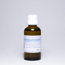 Euphorbium D4 innerlich