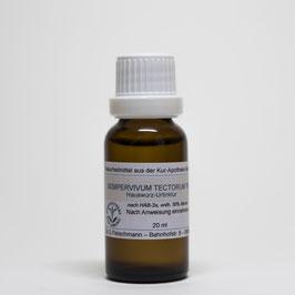 Sempervivum tectorum TM – Hauswurz-Urtinktur