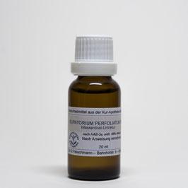 Eupatorium perfoliatum TM  – Wasserdost-Urtinktur