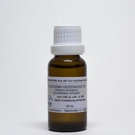 Glechoma hederacea TM – Gundelreben-Urtinktur