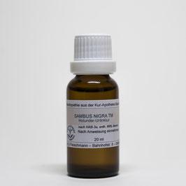 Sambucus nigra TM (flos+fol.) – Holunder-Urtinktur
