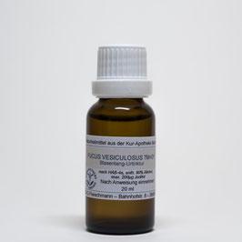 Fucus vesiculosus TM=D1 – Blasentang-Urtinktur