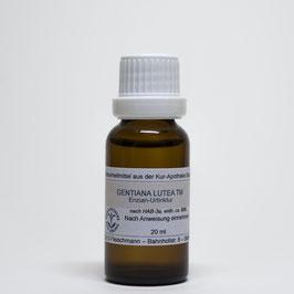 Gentiana lutea TM – Enzian-Urtinktur
