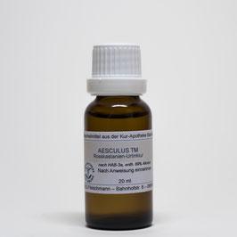 Aesculus hippocastanum TM – Rosskastaniensamen-Urtinktur
