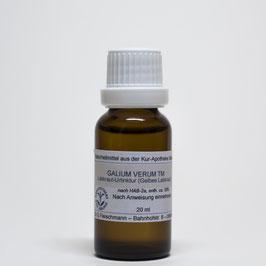 Galium verum TM – Labkraut-Urtinktur