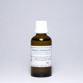 Prunus spinosa TM – Schlehenblüten-Urtinktur