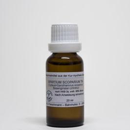 Spartium scoparium TM – Besenginster-Urtinktur