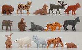 Animal Planet  2016