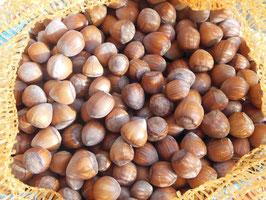 Rieser Bio Haselnüsse, Ursprung Kroatien, aus ökologischem Anbau DE-Öko-006, Ernte 2019, Sortierung >20mm