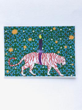 Tiger rot