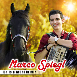 Da is a Gfühl in mir-Marco Spiegl