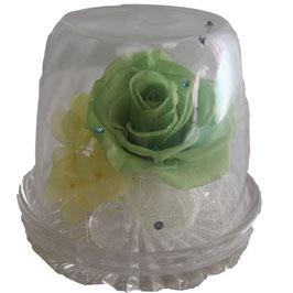 ガラスドーム グリーン
