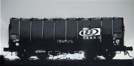 Belgium SNCB B-Cargo Shimmns Freight Car 1/5