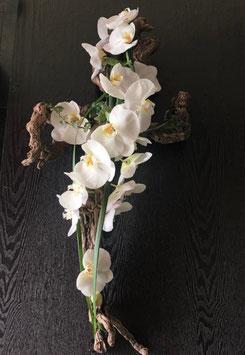Croix Morphée en orchidée
