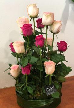 fuseau de roses Iliade