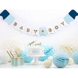 Festone baby girl/baby boy
