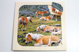Rahmenpuzzle Pferde