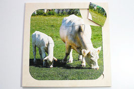 Rahmenpuzzle Kühe