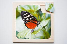Rahmenpuzzle Schmetterling