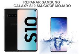 Reparar / Recuperar  Samsung Galaxy S10 SM-G973F MOJADO