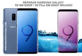 Reparar / Recuperar Samsung Galaxy S9 SM-G960F / S9 Plus SM-G965F Mojado