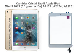Cambiar / Reparar Cristal Táctil Apple iPad Mini 5 2019 (5.ª generación) A2133 , A2124 , A2126