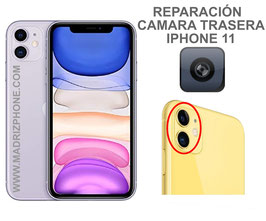 Cambiar / Reparar Camara Trasera iPHONE 11  (ORIGINAL)