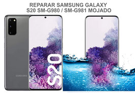Reparar / Recuperar Samsung Galaxy S20 SM-G980F / SM-G981F Mojado