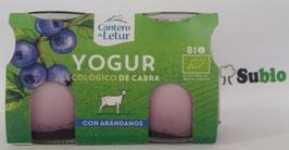 SC. Yogur Ecológico con Arándanos