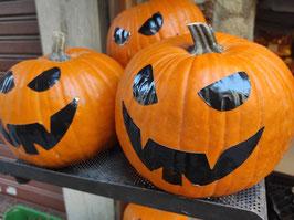 LF. Calabaza Halloween