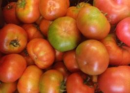 -Tomate Trinity- (AGOTADO)