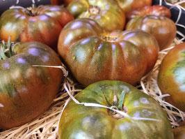 LF. Tomate Raf Ibérico