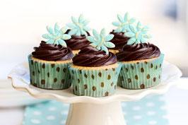 Kurs: Vegane Cupcakes