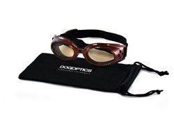 Sunglasses Ibiza Brown